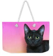 Portrait Of A Black Kitten Weekender Tote Bag