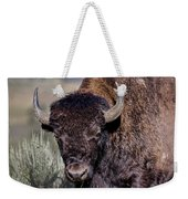 Portrait Of A Buffalo Weekender Tote Bag