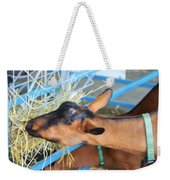 Portrait Of A Goat 2 Weekender Tote Bag