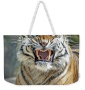 Portrait Of A Growling Tiger  Weekender Tote Bag