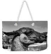 Portrait Of A Llama Mafia Leader Weekender Tote Bag