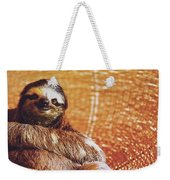 Portrait Of A Sloth Pet Looking In The Camera Weekender Tote Bag