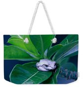 Portrait Of A Tree Frog Weekender Tote Bag