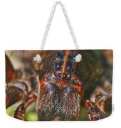 Portrait Of A Wolf Spider Weekender Tote Bag