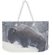 Portrait Of An American Bison Weekender Tote Bag