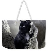 Portrait Of Smoky  Weekender Tote Bag