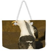 Portrait Of Two Seagulls On A Beach Weekender Tote Bag