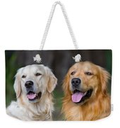 Portrait Of Two Young Beauty Dogs Weekender Tote Bag