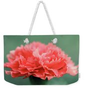 Posh Carnation Weekender Tote Bag