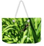 Posing Dragonfly 2 Weekender Tote Bag