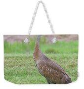 Posing Sandhill Weekender Tote Bag