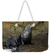 Posing Sea Lion Weekender Tote Bag