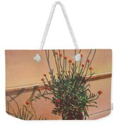 Potfull Of Bounty Weekender Tote Bag