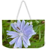 Powder Blue Chicory Weekender Tote Bag