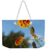 Prairie Cone Flowers Against Blue Sky Vertical Number One Weekender Tote Bag