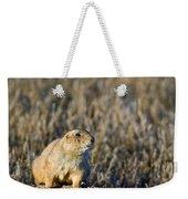 Prairie Dog Alert Weekender Tote Bag