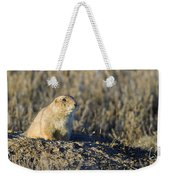 Prairie Dog Watchful Eye Weekender Tote Bag