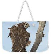 Prairie Falcon Stretching Weekender Tote Bag