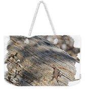 Prairie Lizard _ 1b Weekender Tote Bag