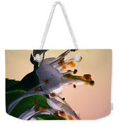 Praise For The Morning... Weekender Tote Bag