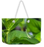 Praying Mantis-2 Weekender Tote Bag