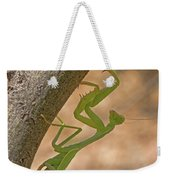 Praying Mantis On The Hunt Weekender Tote Bag