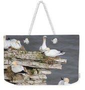 Precarious Nesting Bempton Gannets Weekender Tote Bag