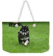 Precious Alusky Puppy Dog Running In A Yard Weekender Tote Bag