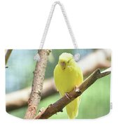 Precious Little Yellow Parakeet In The Wild Weekender Tote Bag