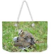 Preening Dove Weekender Tote Bag