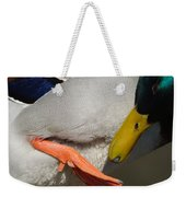 Preening - Santa Cruz, California Weekender Tote Bag