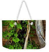 Preston Wall Vine Weekender Tote Bag