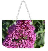 Pretty Blooming Pink Phlox Flowers In A Garden Weekender Tote Bag