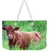 Pretty Brown Cow  Weekender Tote Bag