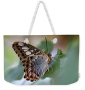 Pretty Butterfly Resting On The Leaf Weekender Tote Bag