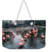 Pretty Flamingoes Weekender Tote Bag
