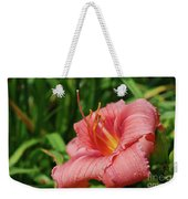 Pretty Flowering Pink Lily In A Garden Weekender Tote Bag