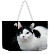 Pretty Kitty Cat 1 Weekender Tote Bag by Andee Design
