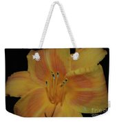 Pretty Orange Daylily Flowering With Pollen On It's Stamen Weekender Tote Bag