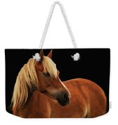 Pretty Palomino Pony Weekender Tote Bag