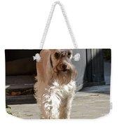 Pretty Pup Weekender Tote Bag