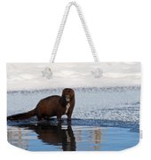 Pretty Reflecting Mink Weekender Tote Bag