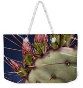Prickly Buds Weekender Tote Bag