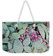 Prickly Pear Cactus Fruits Weekender Tote Bag