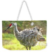 Primping Sandhill Crane Weekender Tote Bag