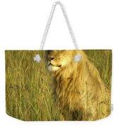 Princely Lion Weekender Tote Bag
