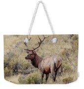 Prize Bull Elk Weekender Tote Bag