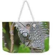 Profile Of A Gray Iguana In The Top Of A Bush Weekender Tote Bag