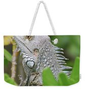 Profile Of A Gray Iguana Perched In A Bush Weekender Tote Bag