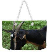 Profile Of A Pygmy Goat In A Farm Field Weekender Tote Bag